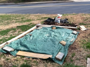 lasagna-gardening-1