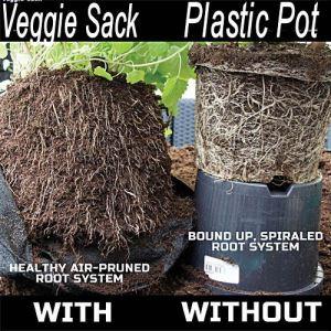veggie_bag2