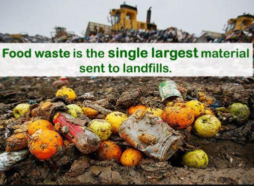 1_food-waste