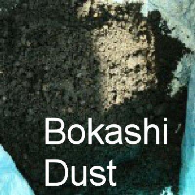 dust1