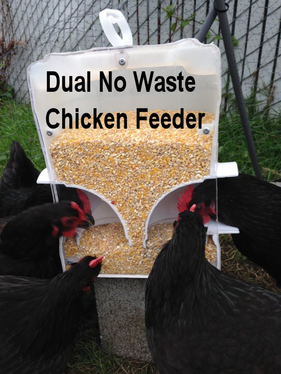 No Waste Rodent Free Chicken Feeders Diy Living Center Oregon