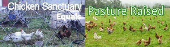 1_pasture