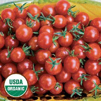 sweet-pea-currant-tomato-organic