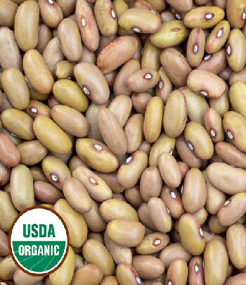 ireland-creek-annie-bean-organic.jpg
