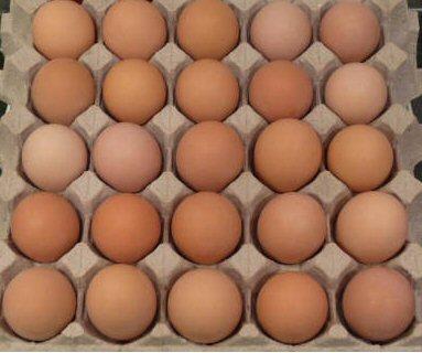 del_egg2
