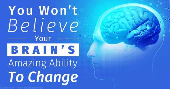 brain-ability-to-change-fb