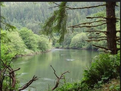 siletz river